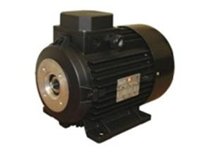 Электродвигатель ЕМЕ TP 112 L4 H5579578X4100