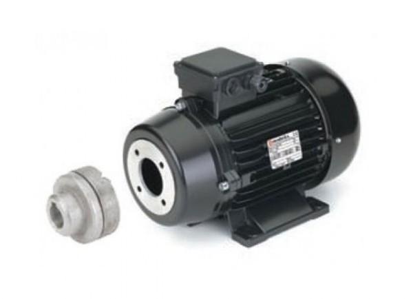 Электродвигатель NICOLINI 6,5 кВт 6kW-FO-NMT-Muffe